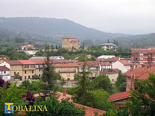 ayuntamiento-valle-de-tobalina-750276